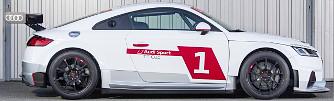 Saj�t versenysorozatot kap az Audi TT