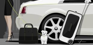 A leg�jabb Rolls-Royce extra: karbonv�zas poggy�szk�szlet 9-12,6 milli��rt