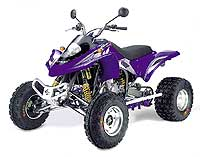 Wild HP 450