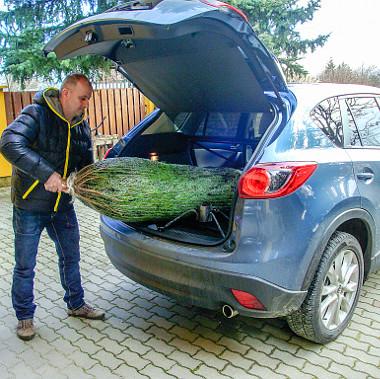 Az ülésdöntés jóvoltából a karácsonyfa is kényelmesen hazatért