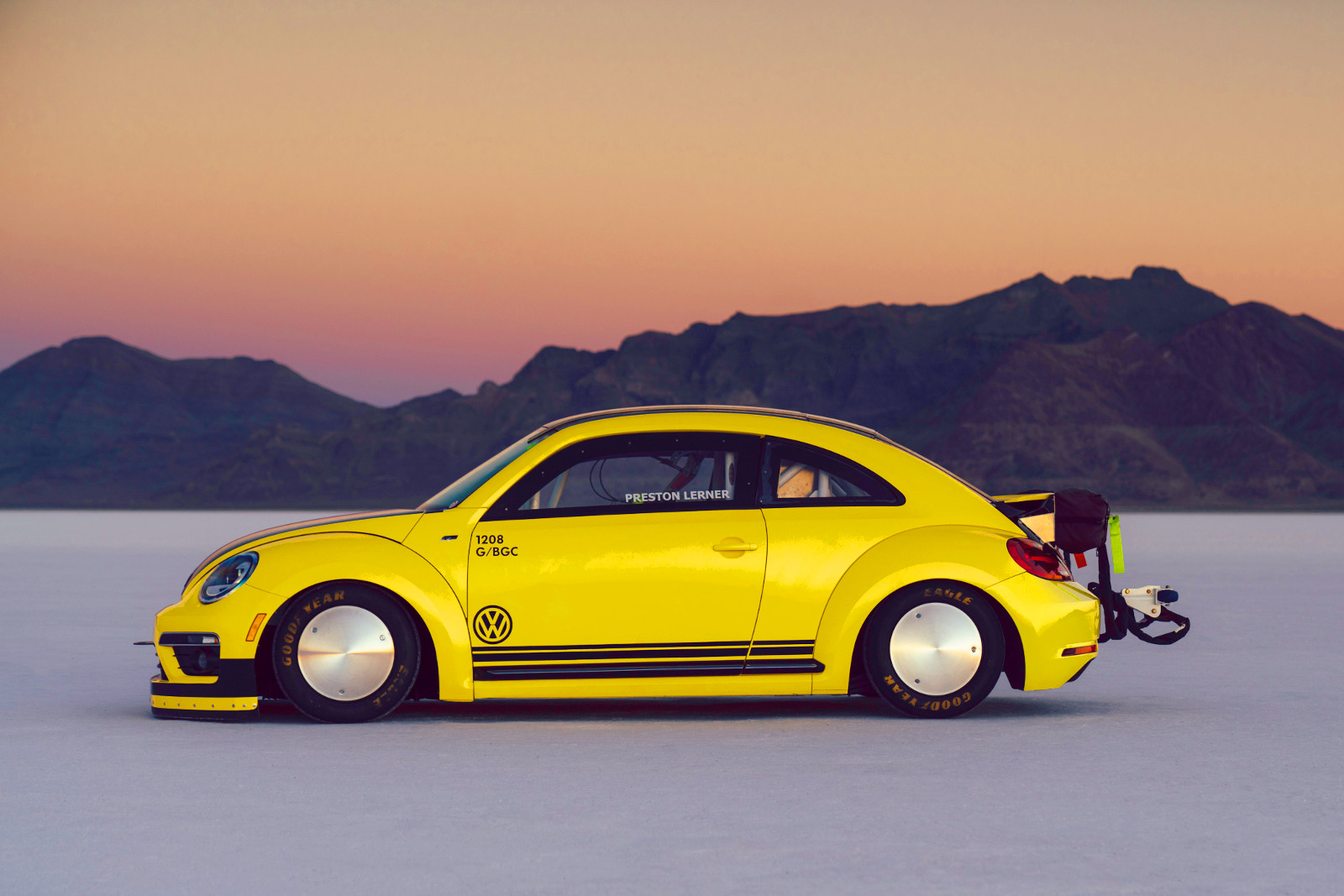 beetle4