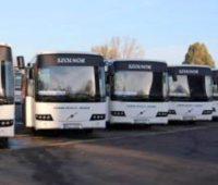 szoljonbuszsofor1