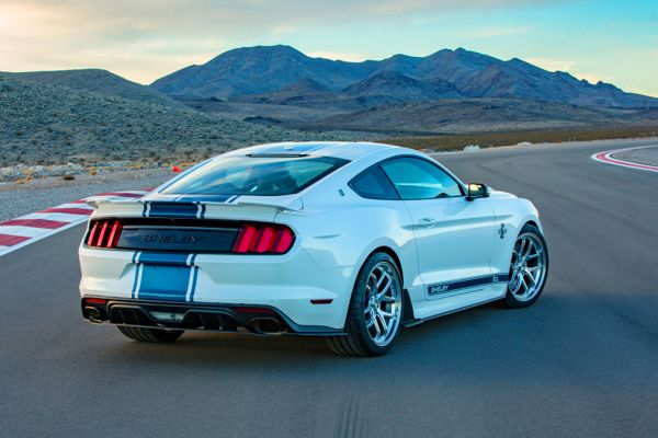 shelby4